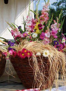 porzellanblumen zum aufhängen weiß