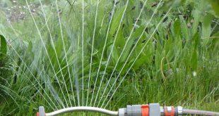 Bild Garten bewässern