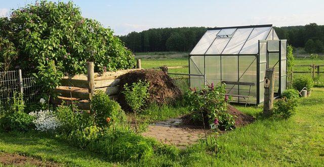 Welches Gewachshaus Passt Zu Ihnen Gartenmagazine De