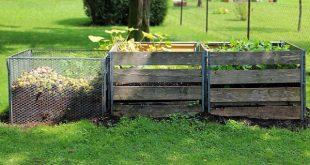 Bild Kompost