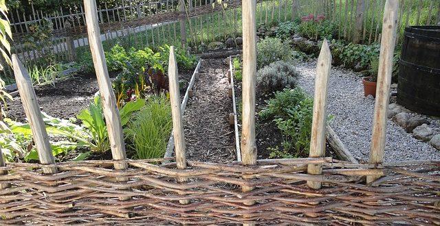 bild krutergarten - Krautergarten Anlegen Beispiele