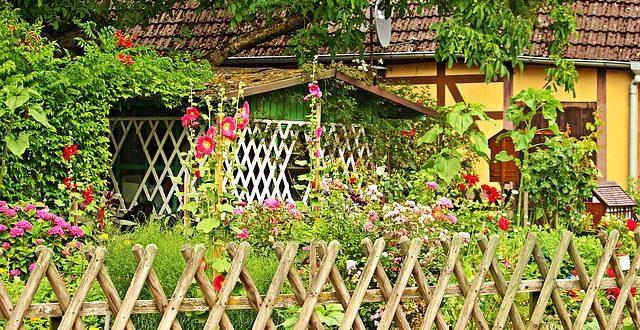 Bild Bauerngarten