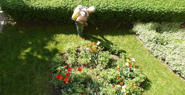 Bild Gärtner