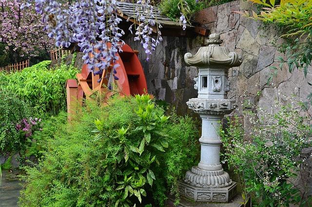 japanische pflanzen asiatisches flair f r deinen garten. Black Bedroom Furniture Sets. Home Design Ideas