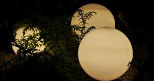 Bild Gartenbeleuchtung
