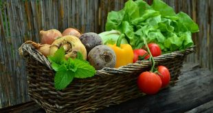 Bild Gemüsekorb