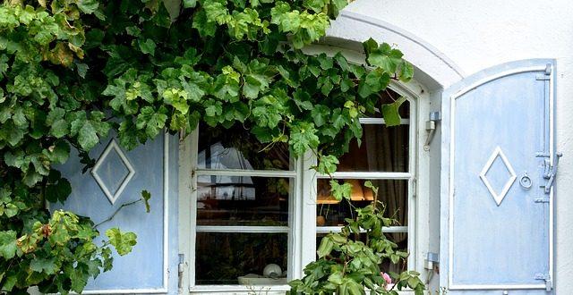Dachbegrunung Fur Das Gartenhaus Gartenmagazine De